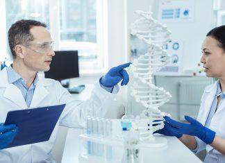 Επιστήμονες αναλύουν το γονιδίωμα των ποικιλιών Chardonnay και Cabernet Sauvignon!